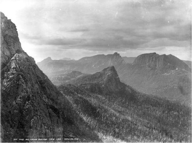 Stephen Spurling III - On the DuCane Range, Tasmania 1913. QVMAG Collection QVM.1993.P.1607